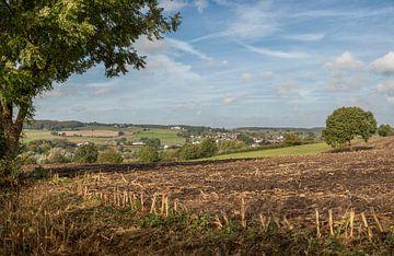 HDR Panorama Geuldal bij Epen in Zuid-Limburg van John Kreukniet