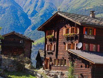Zwitsers huis van Marieke Funke