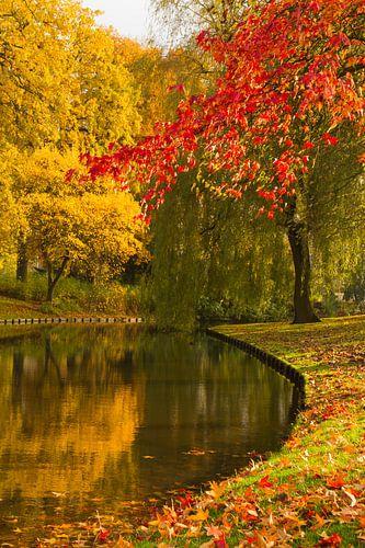 Herfstfoto van Het Park, Rotterdam van
