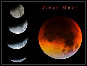 Bloed maan van Dirk van Egmond