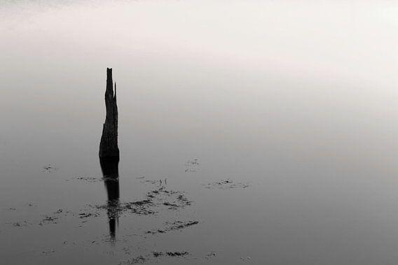 Reflectie in zwart-wit..