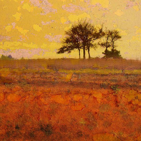 Auf der großen stillen Heide