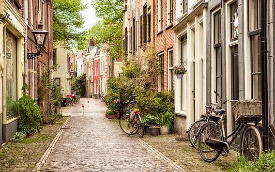 Straatmening in Leiden, Nederland.
