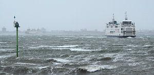 Veerboot Schulpengat in storm van