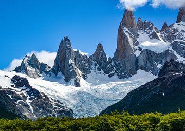 Berglandschap bij Fitz Roy in de Chileens-Argentijnse Andes van Max Steinwald