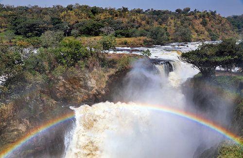 Die Murchison Falls in Uganda von W. Woyke
