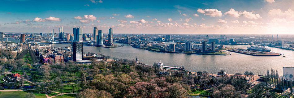 Rotterdam Hollywood style