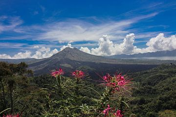 vulcano Bali Agun van Bert Weber