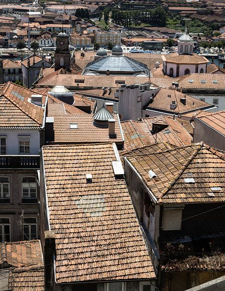Daken van Porto II van Eddie Meijer