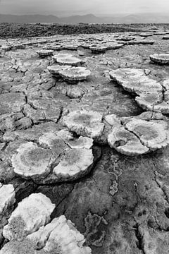 De kunst van zout van Photolovers Reisfotografie