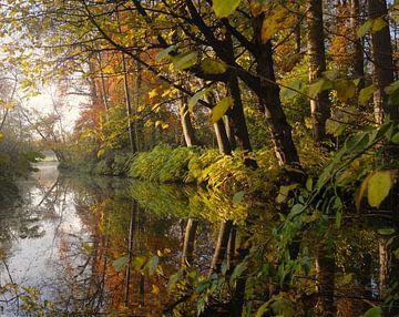 Herfst in Amelisweerd von Pieter Heymeijer