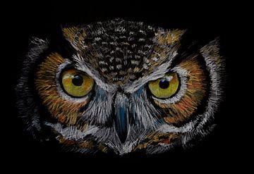 Die Augen der Eule von Ton van Buuren