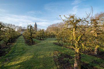 Kerk bij fruitboomgaard van Moetwil en van Dijk - Fotografie
