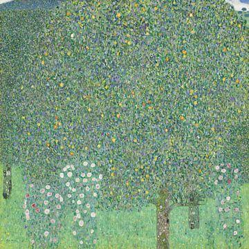 Rozenstruiken onder de bomen, Gustav Klimt