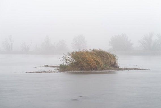 Mistatmosfeer in Märkisch-Oderland