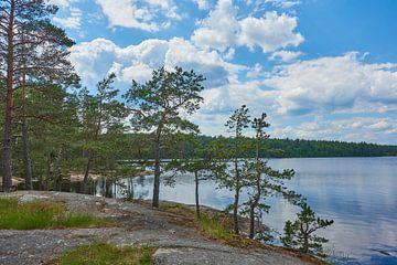 Schwedische Landschaft 186 von Geertjan Plooijer