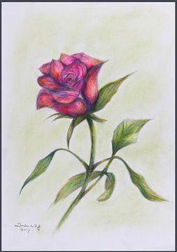Roze roos. van Ineke de Rijk