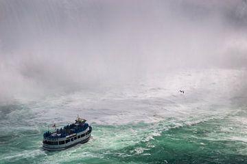 Niagara Falls von Bart Hendrix