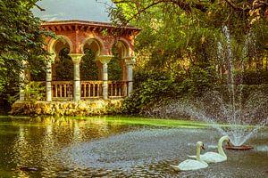 """""""Zwanenvijver"""" in het Maria Louisa Park van Sevilla, Spanje. van"""