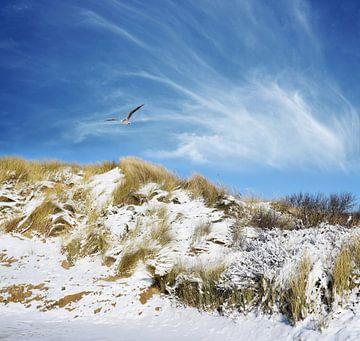 Sneeuw Duinen van Jacky Gerritsen