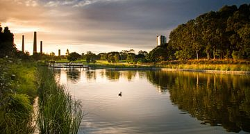 Sydney's Oval Park Zonsondergang van nick van meurs