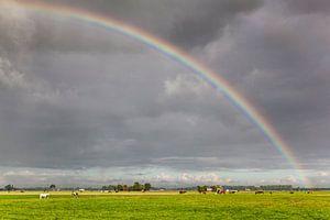 Regenboog over de weilanden van Dorkwerd