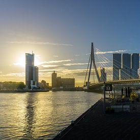 Rotterdam à l'aube | Pont Erasmus sur Ricardo Bouman