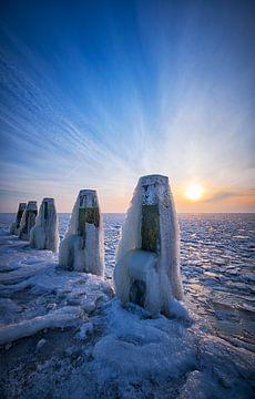 Bevroren ducdalf van Peter de Jong