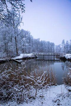 La neige aux Pays-Bas sur Arjen Hartog