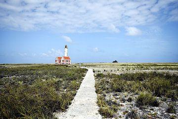 Het pad naar de vuurtoren op Klein Curacao van Manon Verijdt