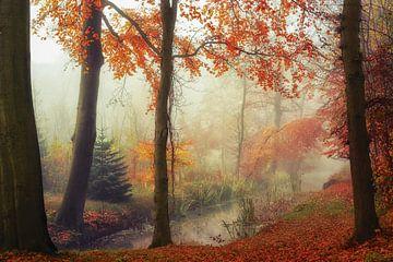 Herfst sur Lars van de Goor