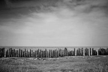 Waddenzee #2 von Ruud van Oeffelen-Brosens