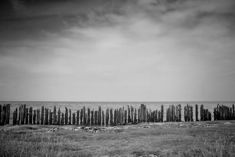 Waddenzee #2 van Ruud van Oeffelen-Brosens