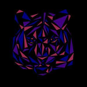 Triangle Tiger von Nele VdM