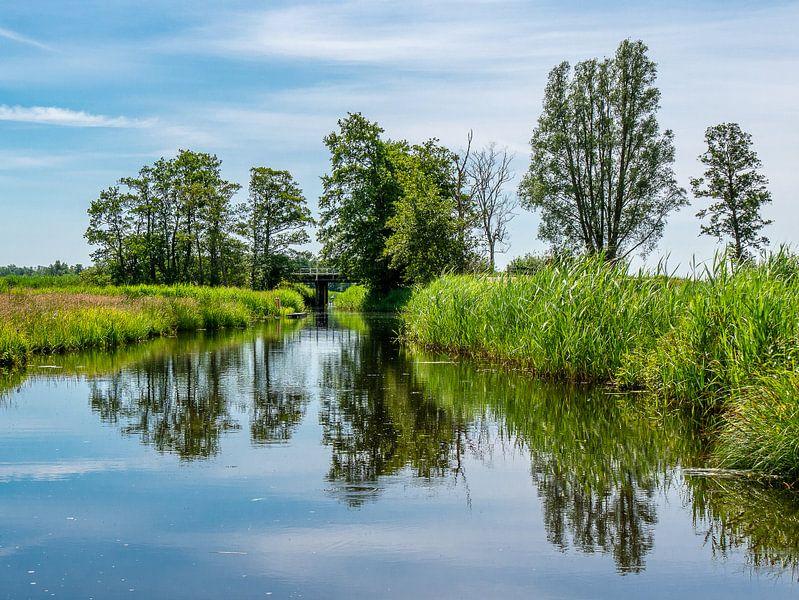 kalm water lab de weerribben van Charlotte Dirkse
