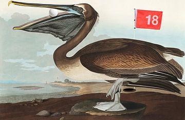 Birds of America - Wrong hole in one, Charlie! van Rudy & Gisela Schlechter
