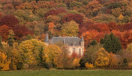 Kasteel Schaloen in herfstkleuren von John Kreukniet