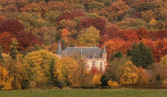 Kasteel Schaloen in herfstkleuren van John Kreukniet