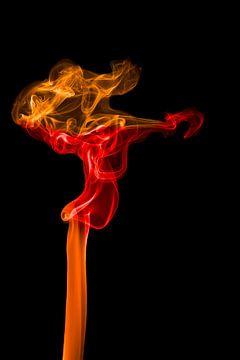 Smokey Women van Ester Ammerlaan