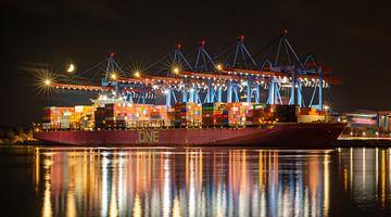 Containerschip op de terminal van Sabine Wagner