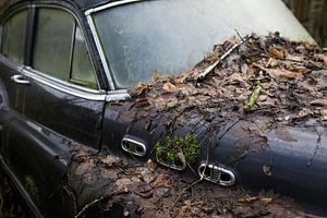 Motorhaube eines klassischen verfallenden Autowracks