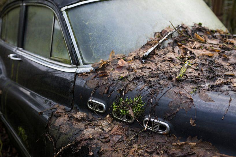 Motorhaube eines klassischen verfallenden Autowracks von Ger Beekes
