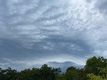 Wolkendecke mit Grün von Emma Van Leur