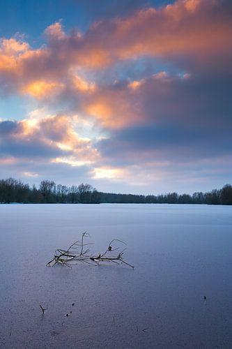 Zonsondergang bij natuurgebied Meinserswijk in de winter. van