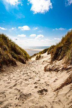 Weg naar het strand bij de vuurtoren van Amrumer van Alexander Wolff