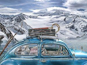 Kever in de Alpen van