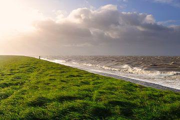 Storm op de dijk sur Sjoerd van der Wal