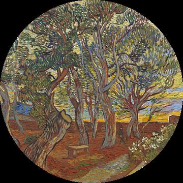 Vincent van Gogh, De tuin van de inrichting