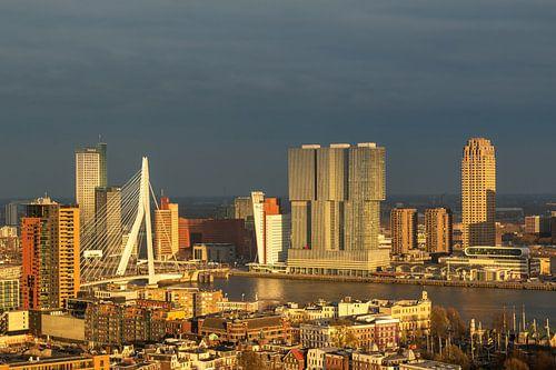 Rotterdam in the golden hour van