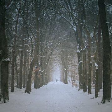 Winter wandeling van Boris Van Berkel